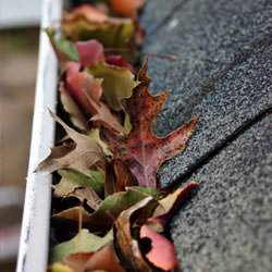 Clogged gutters filled with fall leaves  in Meridianville